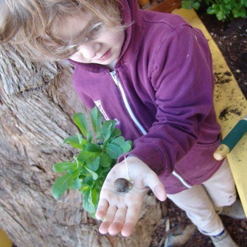 Seven Arrows Edible Garden 7