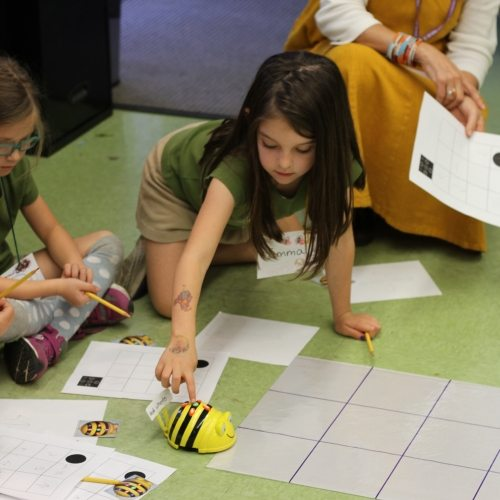 Seven Arrows Academic 10 - Playing Toy Bee