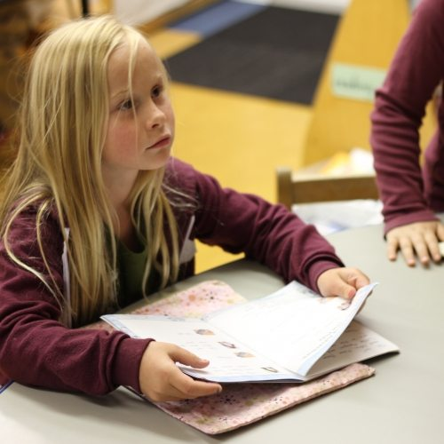 Seven Arrows Academic 7 - Little Girl Listening to Lesson