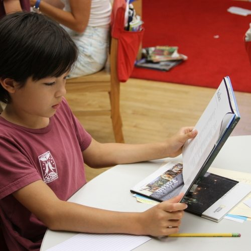 Seven Arrows Academic 4 - little boy reading a book