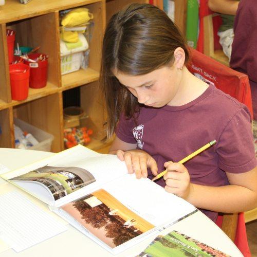 Seven Arrows Academic 3 - little girl studying